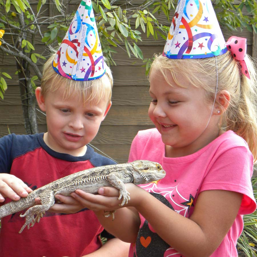 Birthdays | Gatorland | Orlando Florida Family Adventure Theme Park