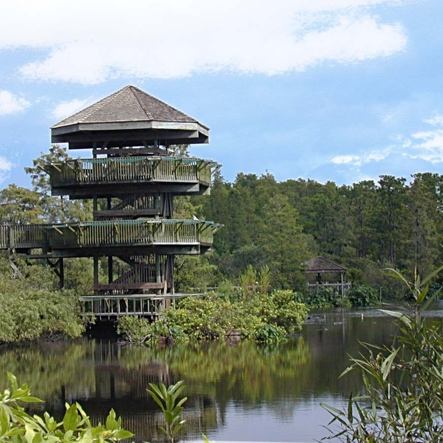 Breeding Marsh & Tower | Gatorland | Orlando Florida Family Adventure Theme Park