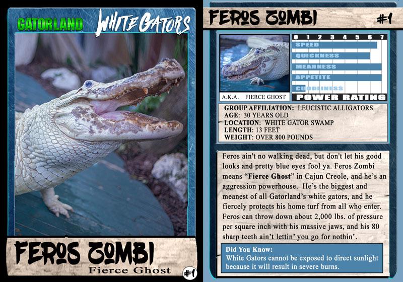 Feros Zombi | White Gator Trading Cards | Gatorland | Orlando Florida Family Adventure Theme Park