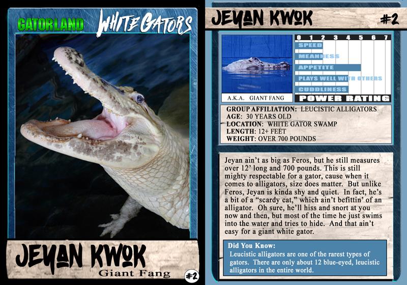 Jeyan Kwok | White Gator Trading Cards | Gatorland | Orlando Florida Family Adventure Theme Park