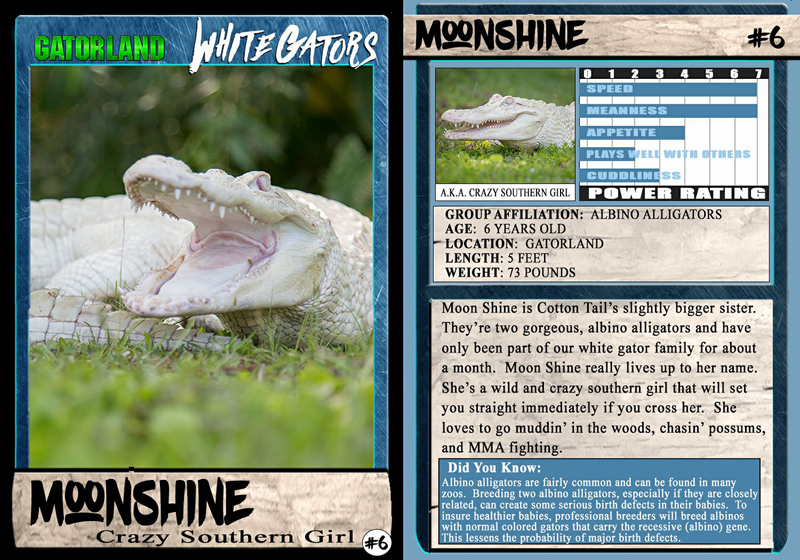 Moonshine | White Gator Trading Cards | Gatorland | Orlando Florida Family Adventure Theme Park