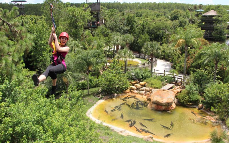 Screamin' Gator Zip Line | Gatorland | Orlando Florida Family Theme Park