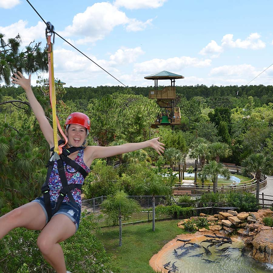 Screamin' Gator Zipline | Gatorland | Orlando Florida Family Adventure Theme Park