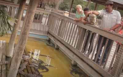 Trainer for A Day | Gatorland | Orlando Florida Family Adventure Theme Park